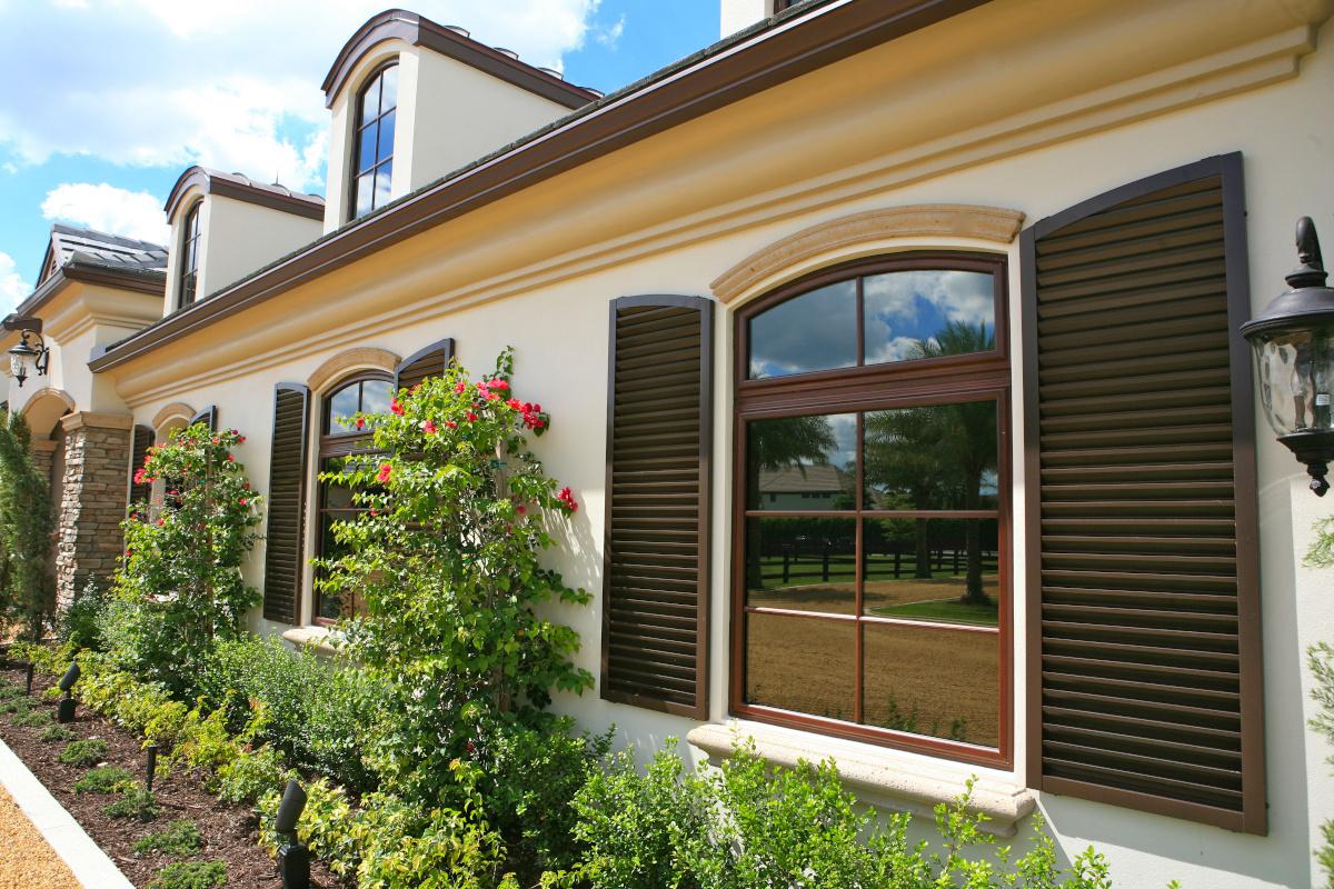 Architectural Window 5